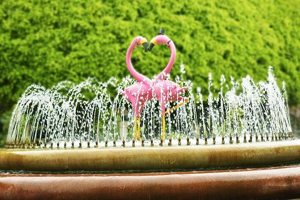 fountain couple proposal